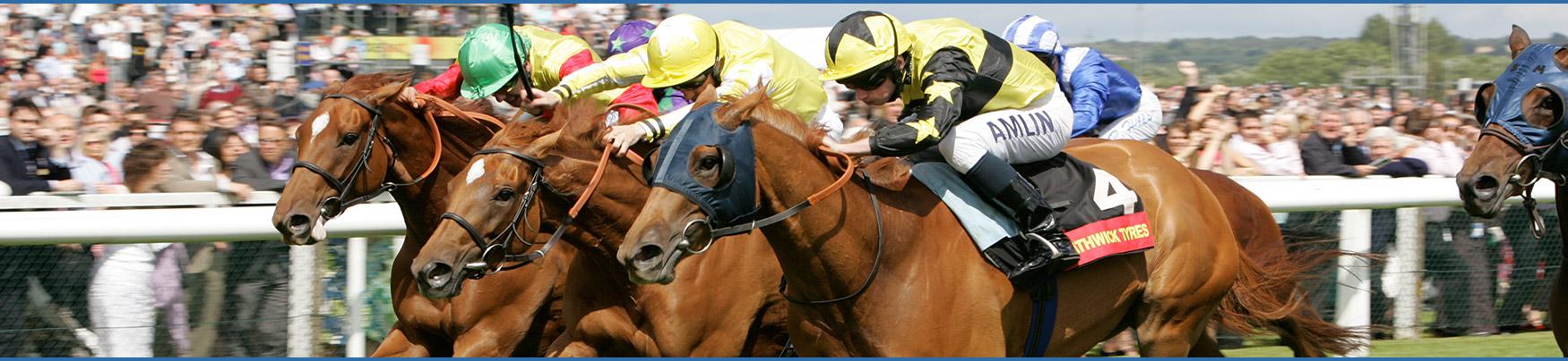 Association of Racecourse Veterinary Surgeons